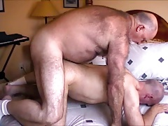 Fucked by not daddy Bear