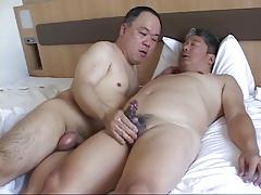 Asian bear 002