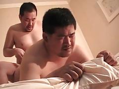 Asian bear 038