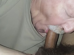 Daddy bear sucking mexican cock