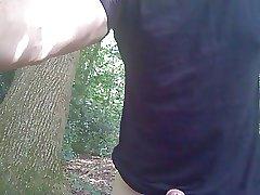forest wank