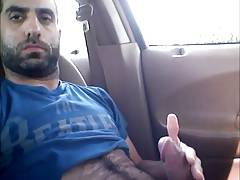 Pajote de barbudo peludo en el coche