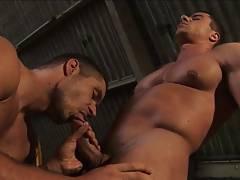 Men at Work 3 Hot and Sweaty Scene 2