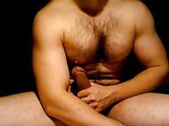 Ben Bulls Nips