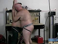 chubby bears in garage
