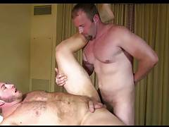 Two Hairy Studs