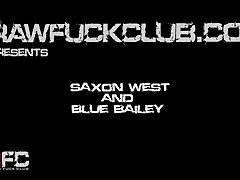 Blue & Saxon