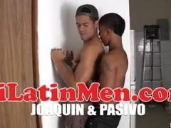 pasivo and joaquin