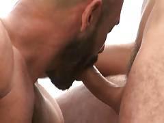 Hairy muscle bald bear fucks Jay Roberts