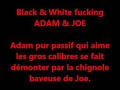 Adam et Joe
