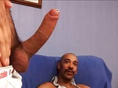 Big cocks
