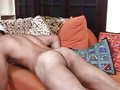 Arabian Cock  5