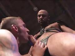 Porn gay muscle in darkroom for leather