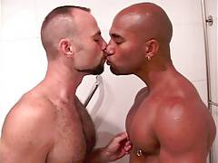 Interracial shower hunks