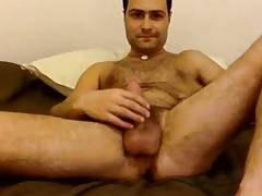 Cute hairy cub having fun