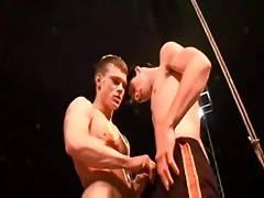 Circus bareback