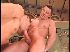 Hot Threesome at Work