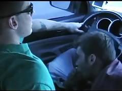 drivers blowjob