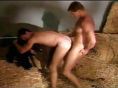 Hot Males Fucking in Barn