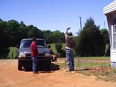 Country Buddies Pissing