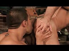 Manuel Torres & Taurus - Raging Stallion