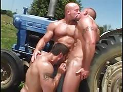 Gay Muscle Gods 3