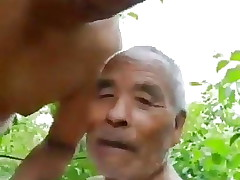 assian ddy blowjob cuing in mouth
