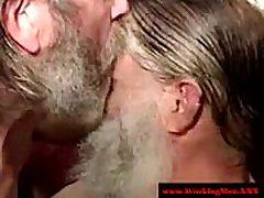 Mature bearded bear sucking