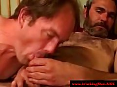 Straight bear toys with redneck cock