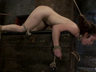 Welcome Back Serena Blair to Hogtied. The perfect