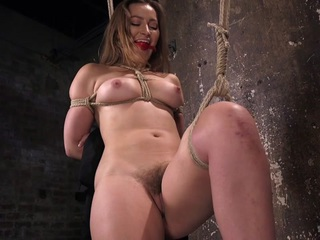 Dani Daniels & The Pope in Dani Daniels Submits In Brutal Bondage - HogTied